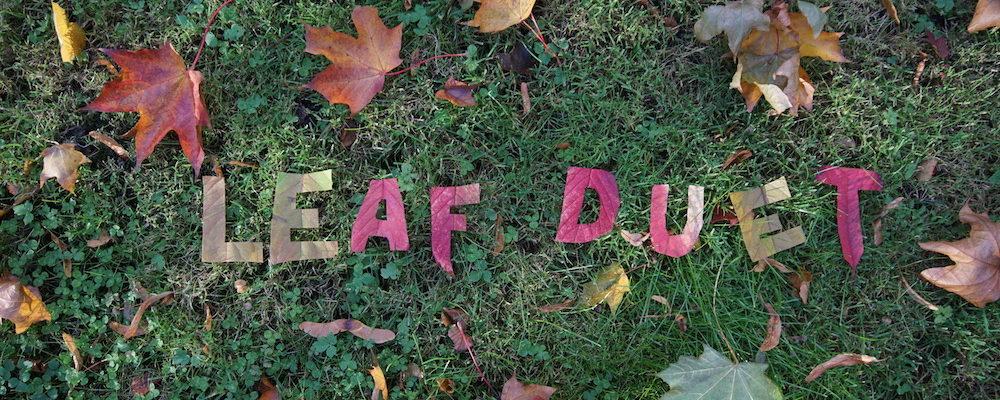 leaf_duet_sweden